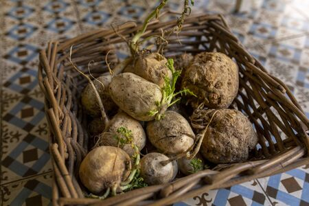 basket celery turnips on rustic soil in organic food store