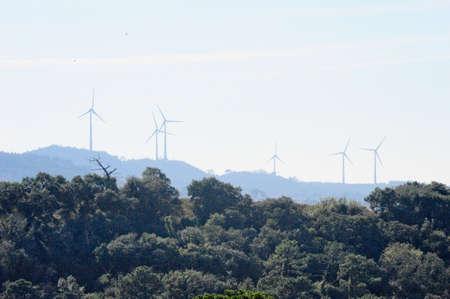 eólic energy field Stock Photo