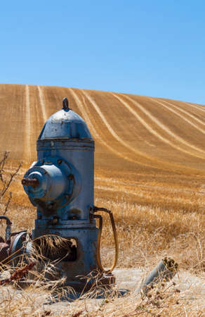 borne fontaine: Hydrant on golden harvested field