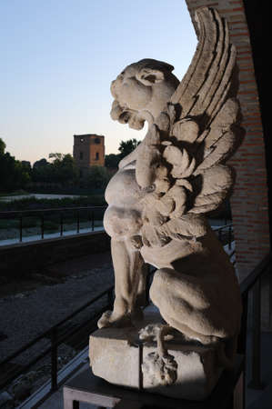 Chimera in Alcal� de Henares  photo
