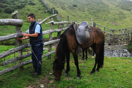 attaching: Rider attaching horse      Mountain range  of  La Bobia   Asturias  SPAIN Editorial
