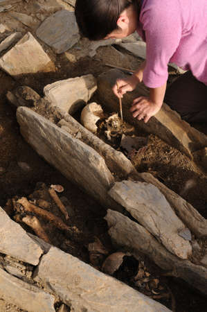 Archaeologist extracting skeleton in the necropolis Archaeological site  Chao Samartin  Asturias SPAIN