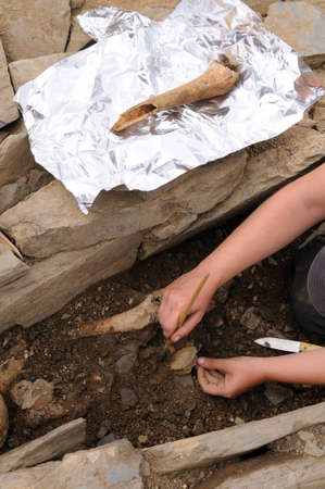 archaeologists: Archaeologist extracting skeleton in the necropolis Archaeological site  Chao Samartin  Asturias SPAIN