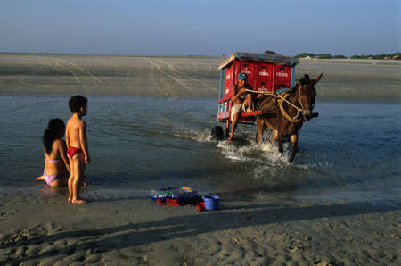 Cart carrying beer on the beach .ALGODOAL ISLAND (Amazon). BRAZIL Stock Photo - 11817095