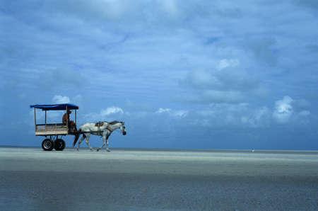 Cart on the beach.ALGODOAL ISLAND (Amazon). BRAZIL