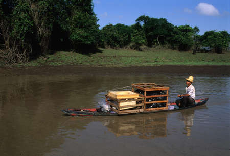 Transporting goods by canoe. Camutins MARAJO ISLAND (Amazon). BRAZIL