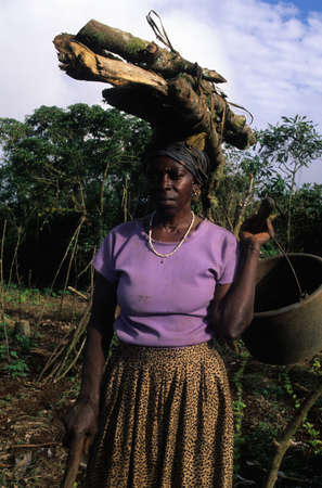 world village: EQUATORIAL GUINEA. South Bioko. MOCA ; Women in agriculture. Editorial