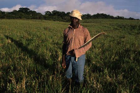 third world economy: EQUATORIAL GUINEA. South Bioko. MOCA ; Man with machete in the evening.