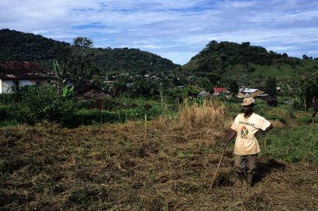 third world economy: EQUATORIAL GUINEA. South Bioko. MOCA ; View Moca. Editorial