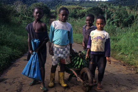 world village: EQUATORIAL GUINEA. South Bioko. MOCA ; Children carrying bananas.