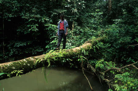 Young  man crossing a river by a tree trunk.