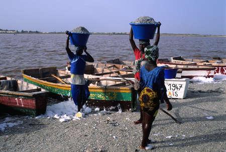 africa sunset: Donna con secchio di sale nella testa. LAC ROSE (Retba) Regione Dakar SENEGAL