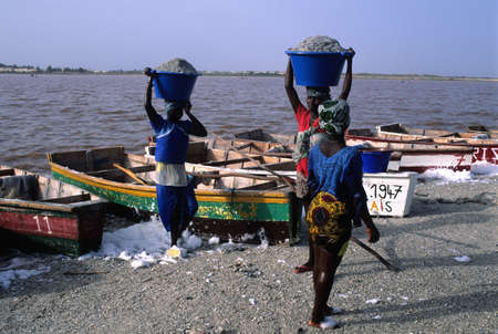 third: Woman carrying bucket of salt in the head. LAC ROSE  ( Retba ) Dakar Region SENEGAL Editorial
