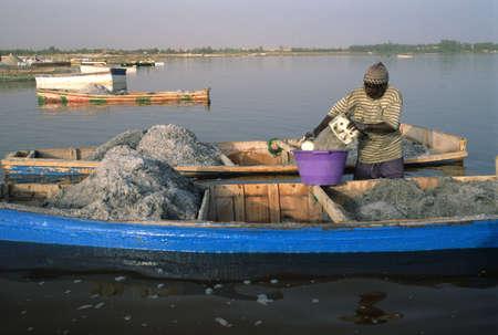 third world economy: Extracting salt from the lake. LAC ROSE  ( Retba ) Dakar Region SENEGAL