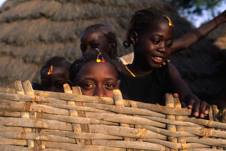 anthropological: SENEGAL. Tambacounda Region   ( Bassari Country )  BEDIK    Village of Iwol  ; Girls with decorations for the  Feast of Initiation