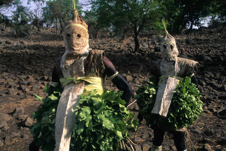 initiation: SENEGAL. Tambacounda Region  ( Bassari Country )  BEDIK   Village of Iwol  ;  Bedik mask   Spirits of Forest    Initiation Ceremony  Editorial