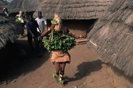 SENEGAL. Tambacounda Region  ( Bassari Country )  BEDIK    Village of Iwol   ; Chicken slaughter animist rite.