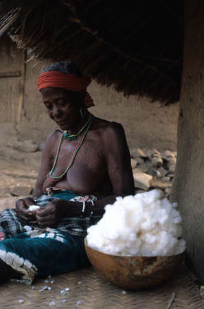 SENEGAL. Tambacounda Region  ( Bassari Country )  BEDIK    Village of Iwol  ; Old  women cleaning cotton .