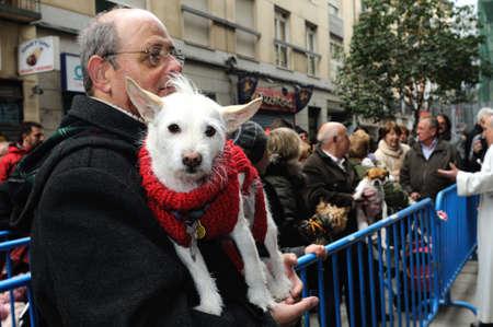 patron of europe: Madrid , SPAIN - 17 JANUARY ,2011. -  SAN ANTON Church   Festivity of St. Anton ( Animals Patron ) on January 17  .