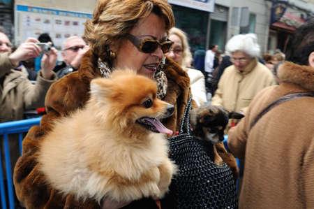 Madrid , SPAIN - 17 JANUARY ,2011. -  SAN ANTON Church   Festivity of St. Anton ( Animals Patron ) on January 17  .