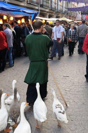 semana:  Quixote Market  Cervantes Week  in ALCALA DE HENARES.Community of Madrid .SPAIN  Editorial