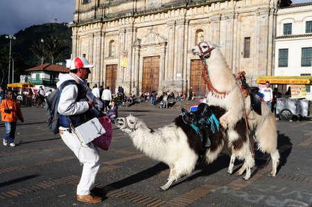mating:    Plaza Simon Bolivar  in  BOGOTA Department of Cundimarca COLOMBIA