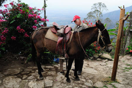 huila: Mule Road -. Aguas Calientes en RIVERA. Departamento del Huila. COLOMBIA