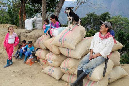 huila: Coffee .Road - Aguas Calientes in RIVERA . Department of Huila. COLOMBIA