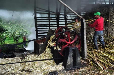 san agustin: Panela (ca?a de az?car) en Isnos (San Agust?n). Departamento del Huila. COLOMBIA