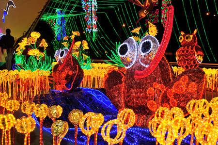 Alumbrado 2013 - Cristmas Lighting in MEDELLIN .Department of Antioquia. COLOMBIA  frog