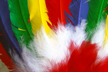 indian brave: Colorred Indian head feathers Stock Photo
