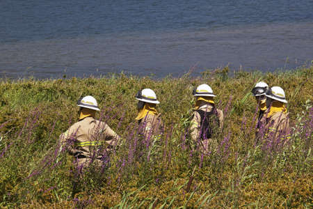 Crew of firefighters, as fire prevention, on the banks of the River Douro