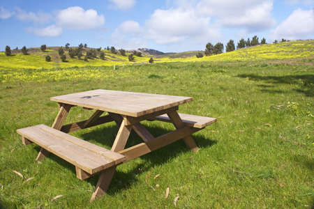 table and chairs: Garden wooden bench isolated in the green meadows