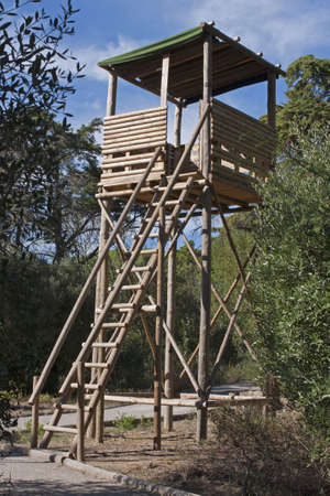 Wooden watch tower in the grove to prevent forest fires photo