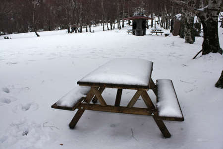 Picturesque winter scene at the park with covered snow wooden benches  photo