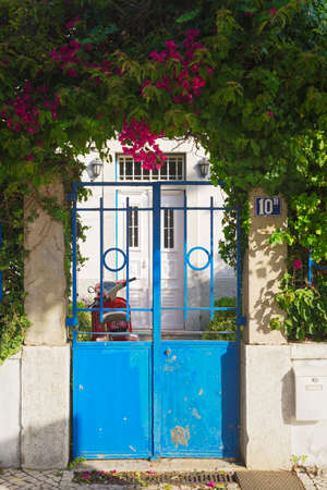 Beautiful family residence entry with an old blue gate surrounded by green vegetation and lovely red flowers