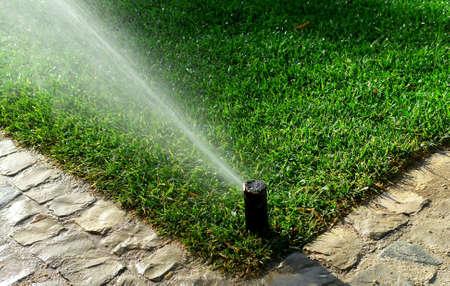 芝生に水をまく庭の灌漑システム 写真素材