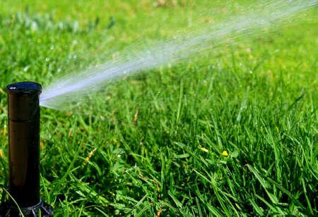 irrigation field: Garden lawn automatic irrigation system
