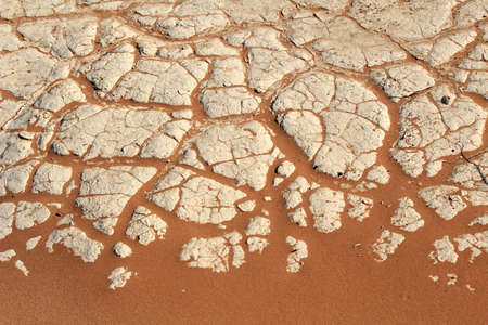 Soil detail of a dry pan, in the Sossusvlei sand dunes, Namib desert. Namibia photo