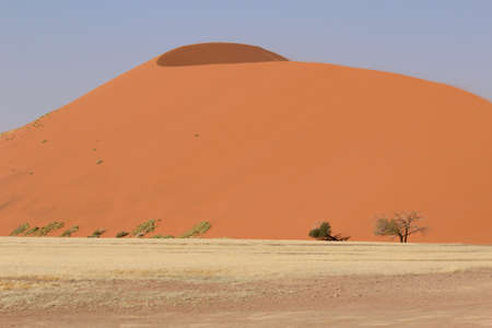Sossusvlei sand dunes landscape in the Nanib desert near Sesriem (Dune 45), Namibia  photo