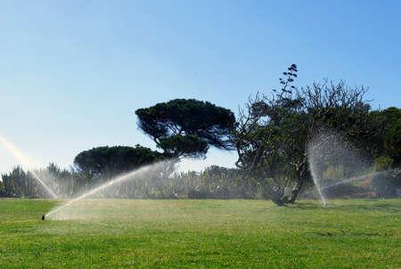 庭の自動灌漑システム作業 写真素材