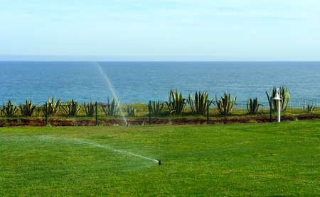 Irrigation system watering lawn in seascape view photo