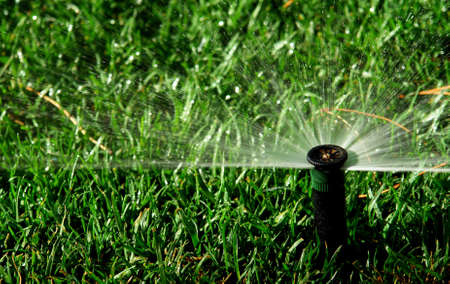 Irrigation system watering backyard lawn                               Stok Fotoğraf