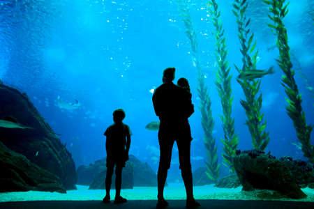 La gente siluetas en el fondo del acuario