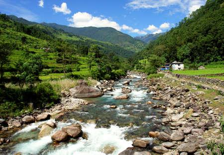 Campos de arroz verde y el paisaje de monta�a del r�o, caminata hacia el campamento base de Annapurna en Nepal