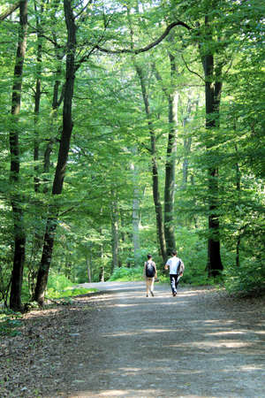 trecking: Couple trecking in famous forest park of Bratislava  Slovakia