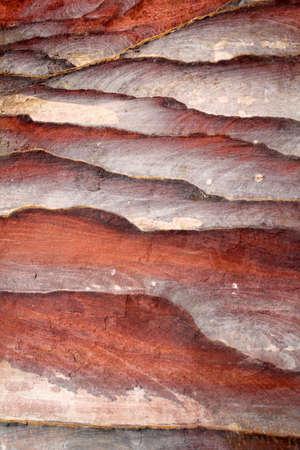 canyon walls: Sandstone gorge abstract pattern formation, Rose City cave, Siq, Petra, Jordan