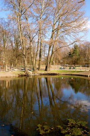 the center of the city: Tiergarten centro parque de la ciudad de Berl�n, Alemania.