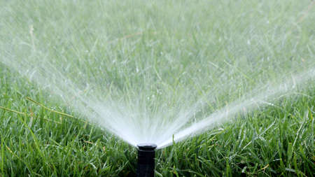 Automatic Garden Irrigation Spray watering lawn Stock Photo