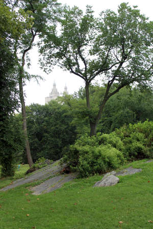 central park: Central Park in an autumn cloudy day. New York City Stock Photo